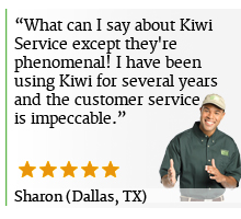 Kiwi Dallas Wood Floor Cleaning Review