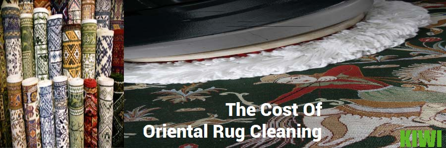 rug cleaning prices and cost