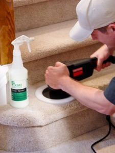 KIWI Professional Carpet Cleaners