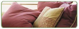 Kiwi Services Upholstery cleaning